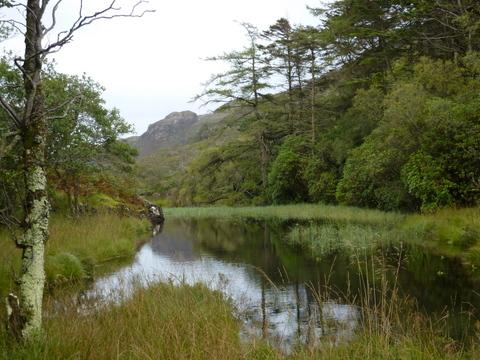 Loch's end