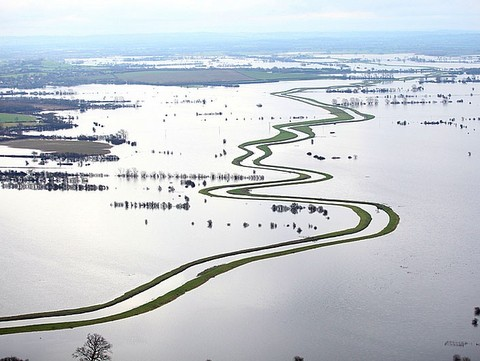 Somerset floods - Daily Telegraph