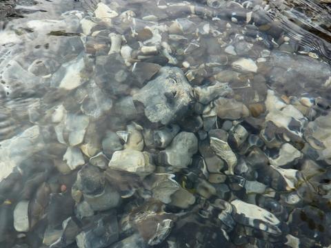 Wandle gravel